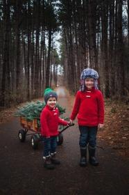 November 24, 2018{Christmas Minis 2018}14